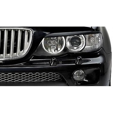 BMW X5 E53 Headlight...